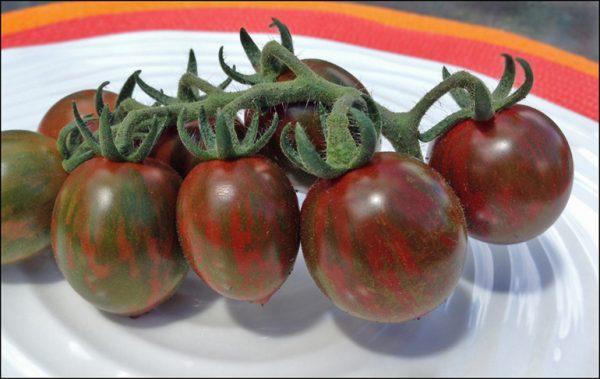 Cà chua socola có tốt không? Nên chế biến như thế nào ?