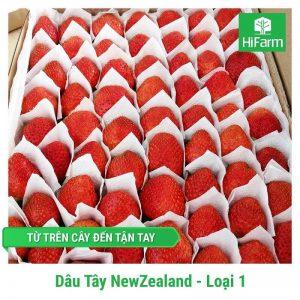 Dâu New Zealand (Loại 1)