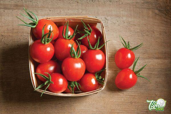 cà chua tốt không