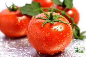 Có nên để cà chua trong tủ lạnh